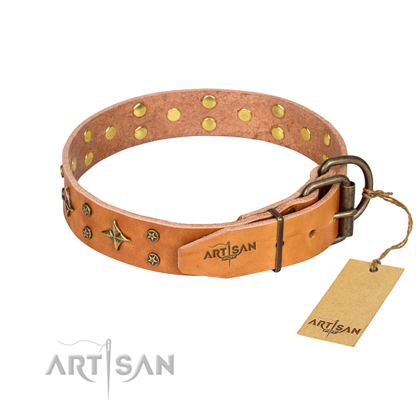 Walking genuine leather collar with adornments for your canine