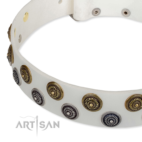Genuine leather dog collar with exceptional decorations