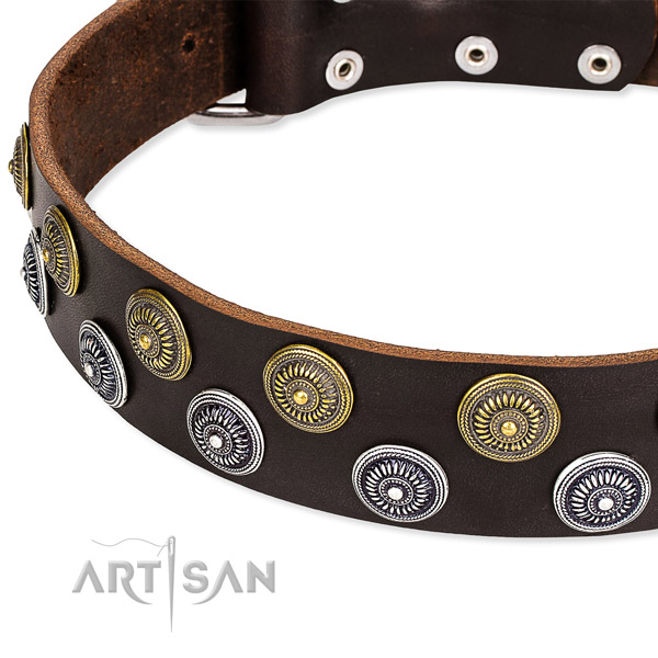 Genuine leather dog collar with trendy studs