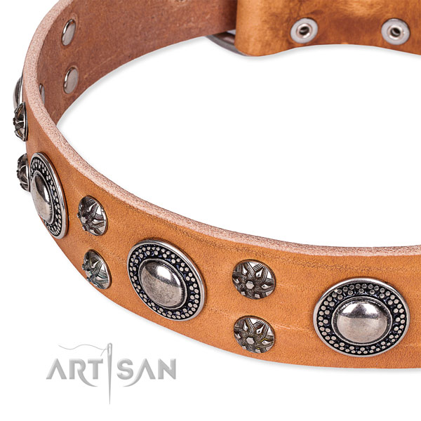 Stylish walking natural genuine leather collar with corrosion resistant buckle and D-ring