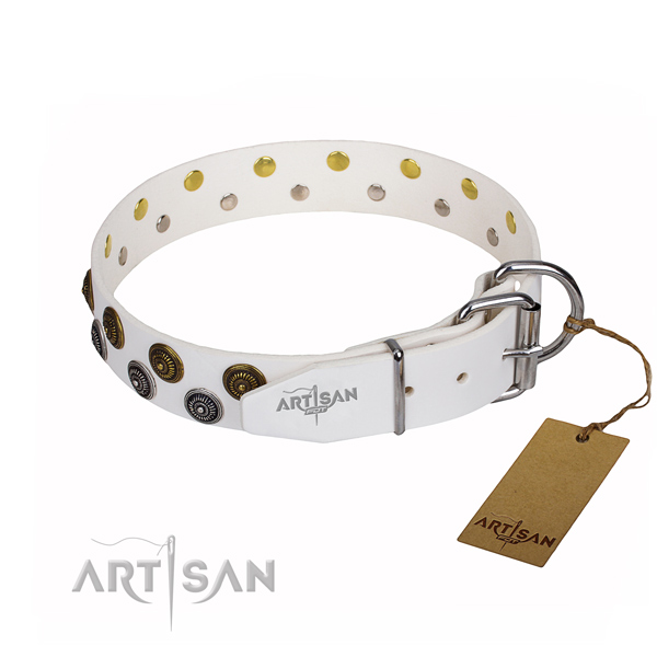 Everyday walking leather collar with decorations for your canine