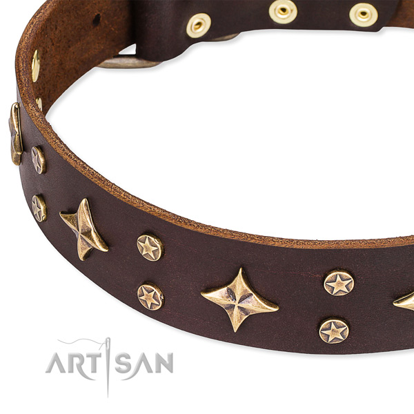 Full grain genuine leather dog collar with incredible studs