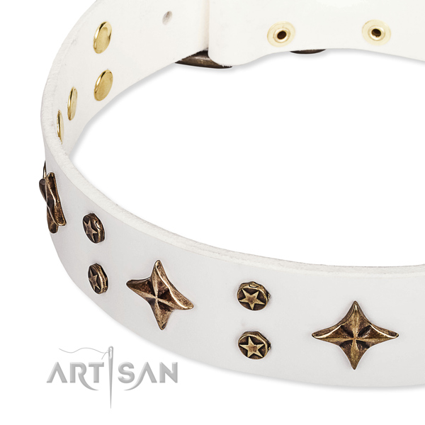 Full grain natural leather dog collar with impressive embellishments