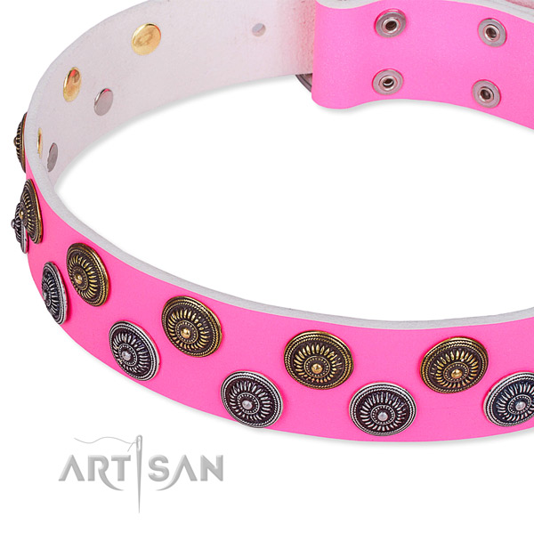 Full grain leather dog collar with top notch embellishments