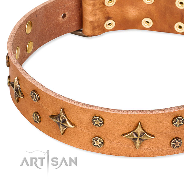 Full grain genuine leather dog collar with inimitable decorations