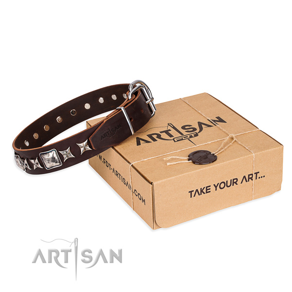 Adorned full grain genuine leather dog collar for everyday use