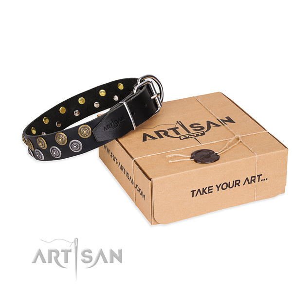 Full grain leather dog collar with decorations for daily walking