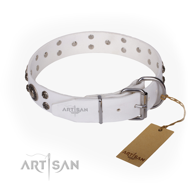 Everyday walking leather collar with studs for your pet