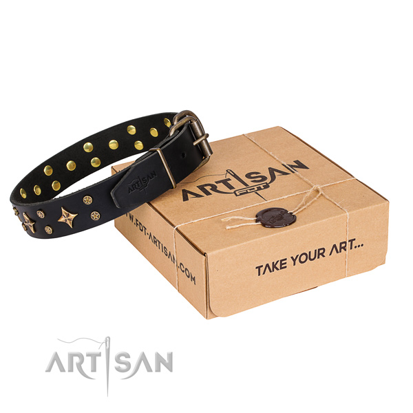 Adorned full grain natural leather dog collar for everyday walking