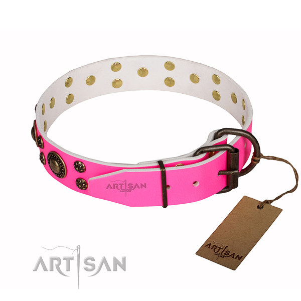 Everyday walking genuine leather collar with adornments for your canine