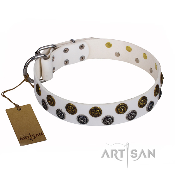 Unusual natural genuine leather dog collar for daily use