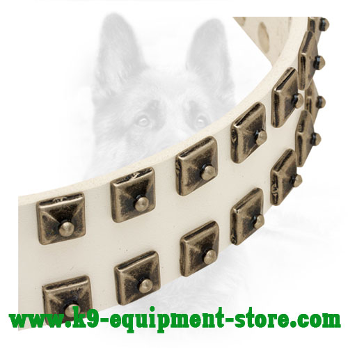 Doted Square Studs Riveted to walking in Style White Leather Canine Collar