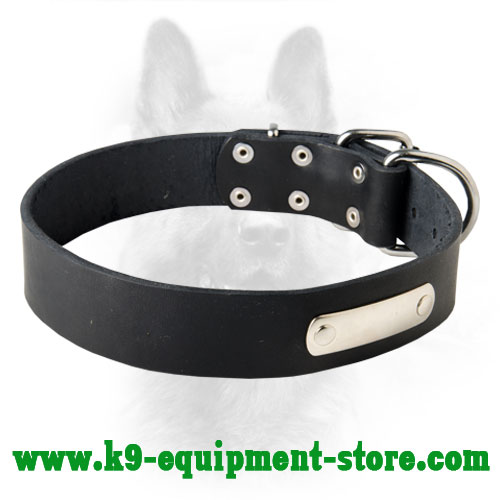 Leather Collar for K9 Identification