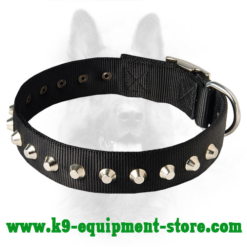 Nylon Collar for K9 Daily Walking