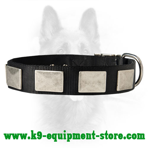 Nylon Collar for K9 with Massive Nickel Plates