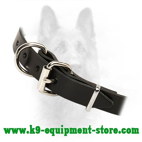 K9 Dog Collar With Rust Resistant Hardware
