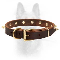 K9 Dog Collar With Brass Spikes Riveted For More  Durability