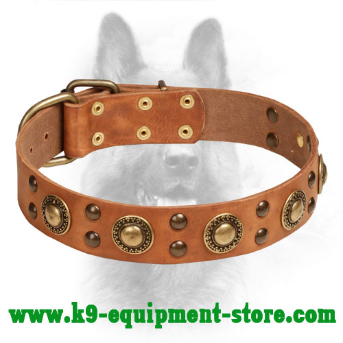 Dog Collar Leather K9 Brooches