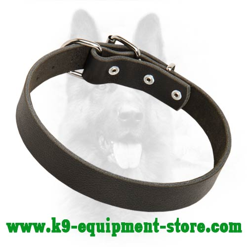 K9 Dog Collar Leather With Rust Resistant Hardware