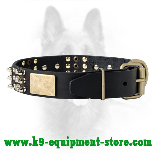 Dog Collar for Canine with Durable Brass Hardware