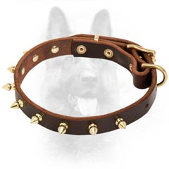 Leather Dog Collar With Brass Fittings