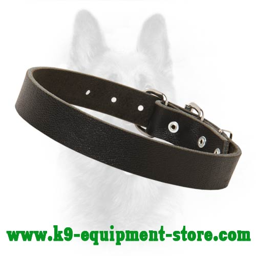 K9 Dog Collar Leather for Obedience Training