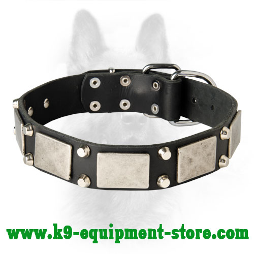 K9 Leather Dog Collar Studded and Plated for Comfy Walking