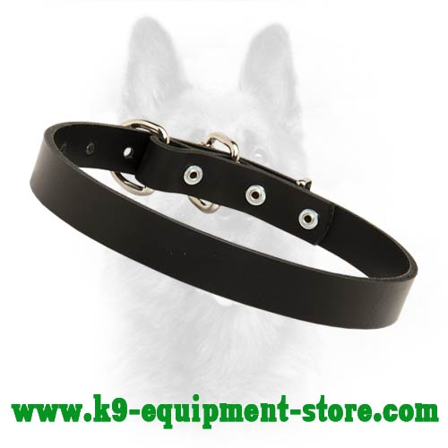 Exclusive Leather Dog Collar Is Very Soft And Plaesant  For Wearing