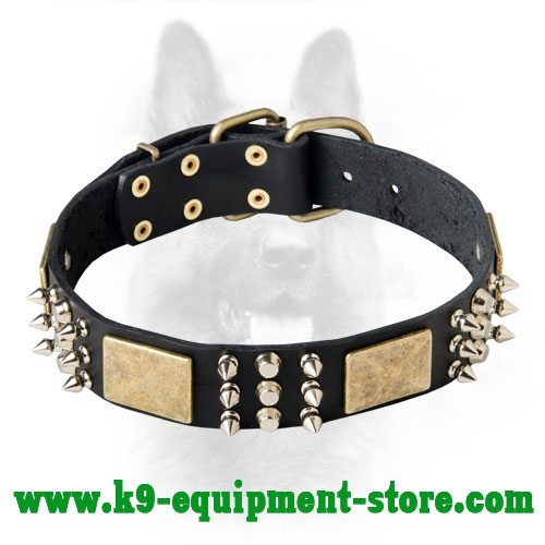 K9 Leather Dog Collar with Rust-proof Fittings