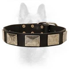 Leather Dog Collar With Rust Resistant Hardware