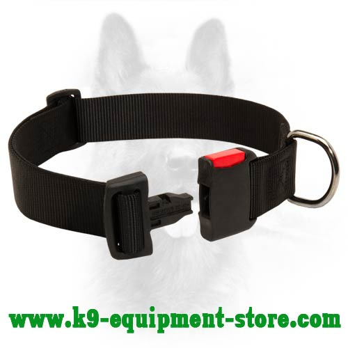 Canine Nylon Collar with Easy in Use Buckle