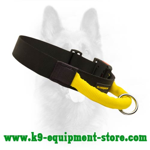 Nylon Canine Dog Collar with Durable Nylon Handle