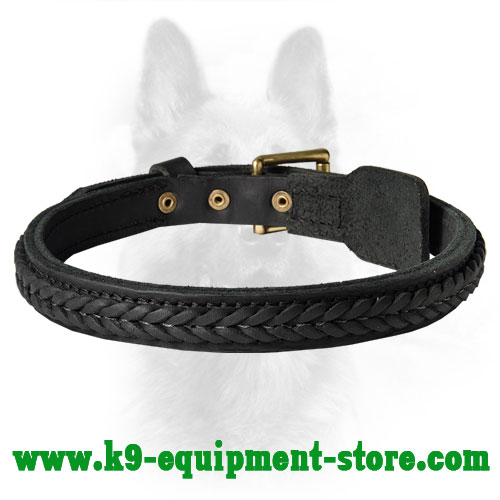 Leather Canine Dog Collar with Braids