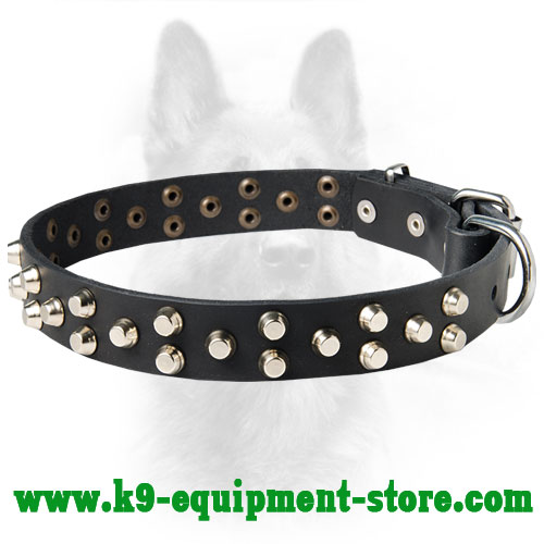 Leather Dog Collar for Canine with Riveted Studs