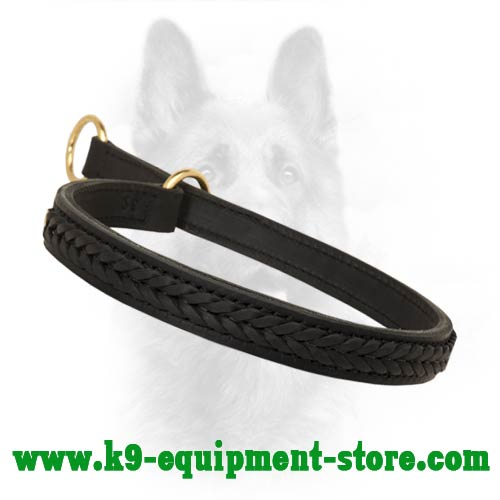 Leather Choke Dog Collar for Canine with Braids