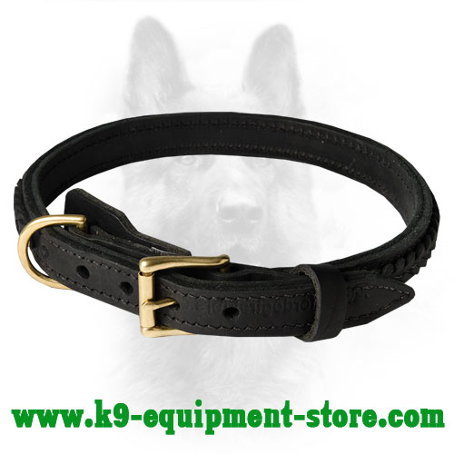 Leather Canine Dog Collar with Stitched Hardware