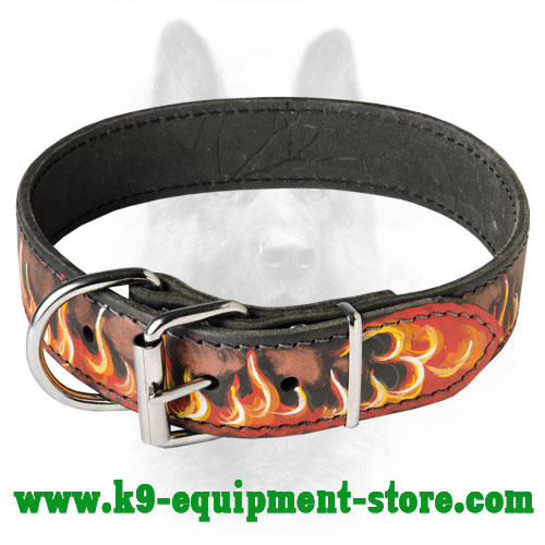 K9 Leather Collar with Nickel Buckle and D-ring