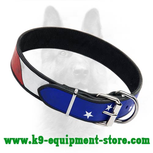 Leather Canine Dog Collar with Patriotic Painting