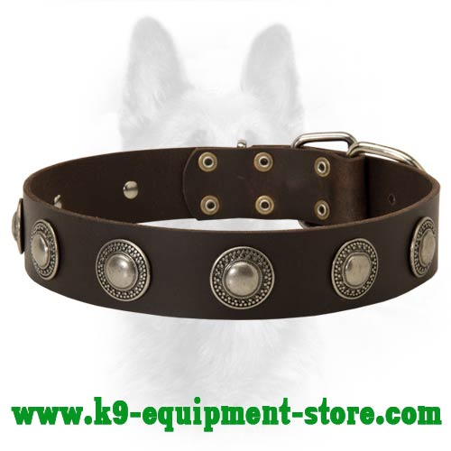 Leather Canine Dog Collar with Nickel Circles