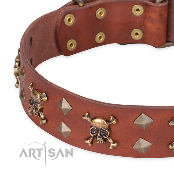 Day-to-day leather dog collar with refined decorations