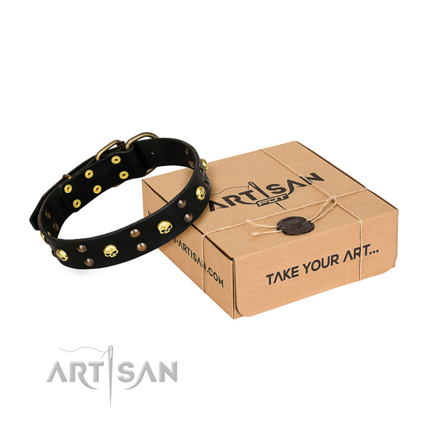 Casual style leather dog collar with refined studs