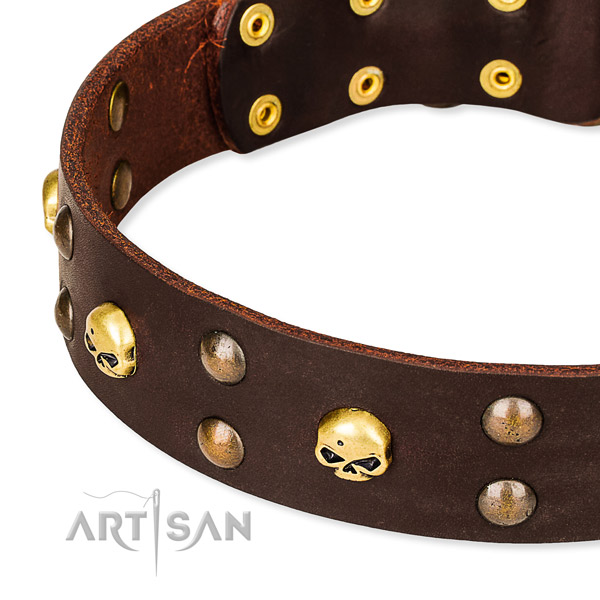 Day-to-day leather dog collar for training