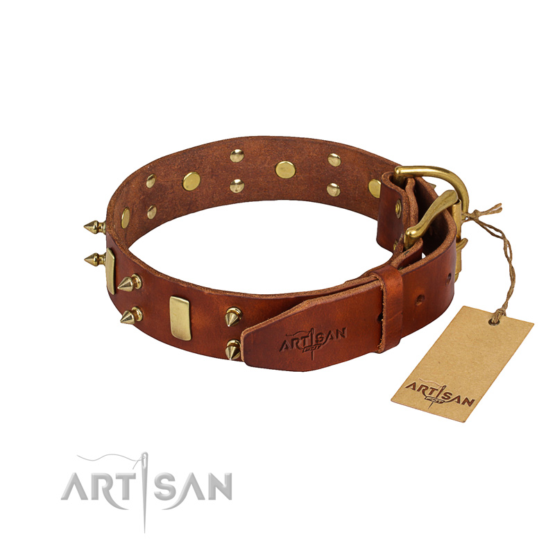Full grain leather dog collar with smooth surface