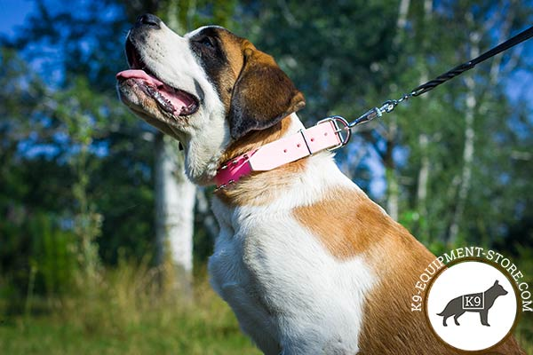Moscow-Watchdog pink leather collar of lightweight material with spikes for better comfort