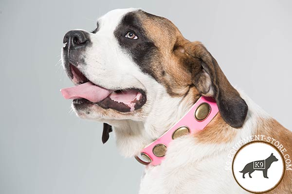 Moscow Watchdog pink leather collar with non-corrosive hardware for daily walks