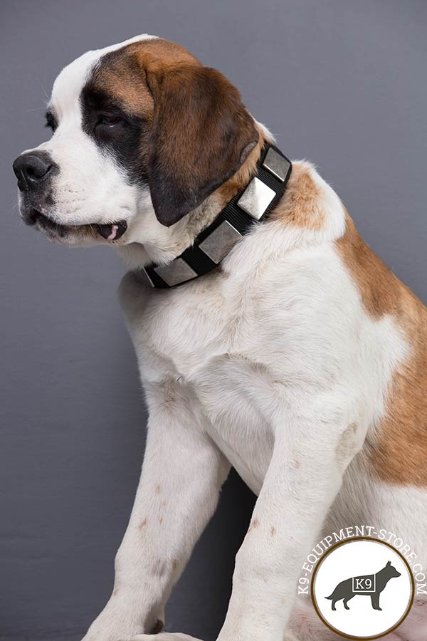 Moscow Watchdog nylon collar with rust-resistant hardware for daily activity