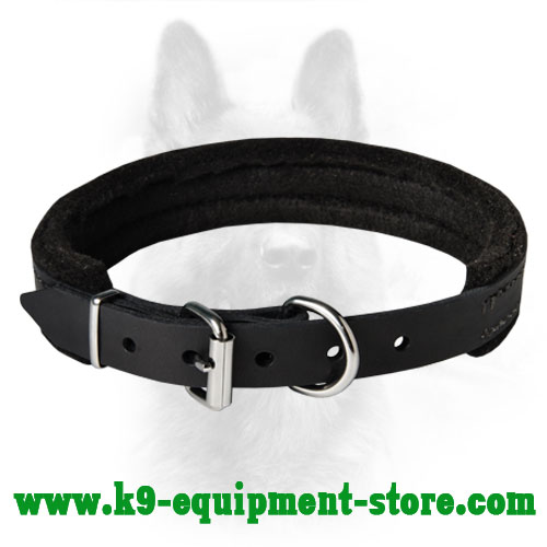 Narrow Leather Dog Collar for K9 with Felt Padding