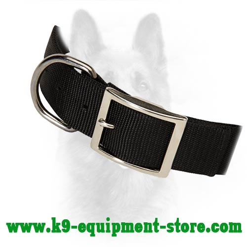 Nickel D-ring for Leash Attachment