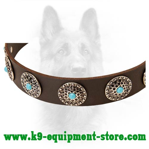 Nickel Circkles and Blue Stones Decorate K9 Leather Collar
