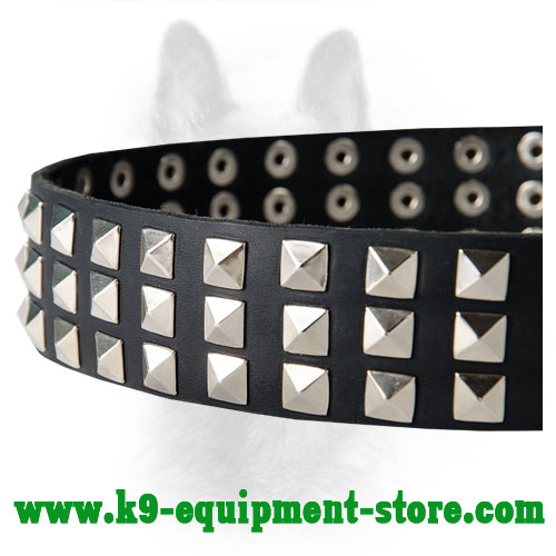 Nickel Pyramids Hand Set on Canine Leather Collar